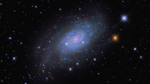 Spiral Galaxy NGC 2403 by David Ratledge
