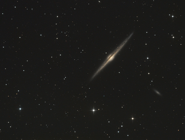 NGC 4565 (The Needle Galaxy) - Image Courtesy of David Davies