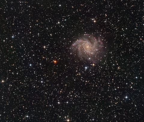 NGC6946 - Image Courtesy of David Davies