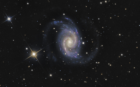 NGC1566 with a Supernova - Image Courtesy of Steve Crouch