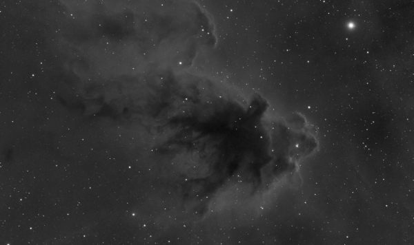 The Bogeyman nebula (LDN 1622) in Orion - Image Courtesy of Sara Wager