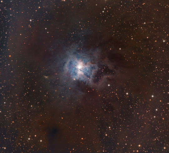 NGC 7023 - Image Courtesy of Bill Snyder