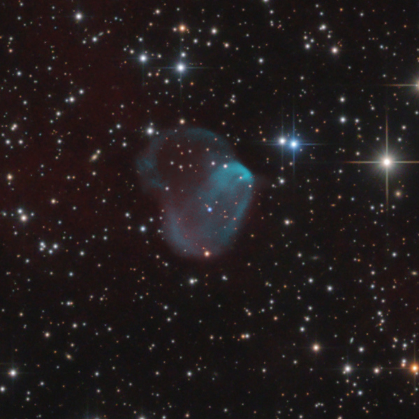 Closer view of planetary nebula Patchick 5 in Cygnus - Image Courtesy of the Bernhard Hubl