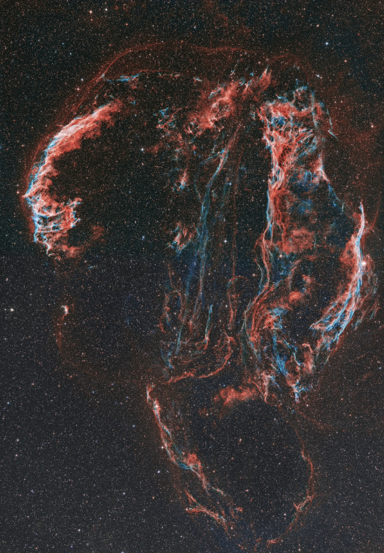 Widefield mosaic of the Veil Nebula - Image Courtesy of Sara Wager